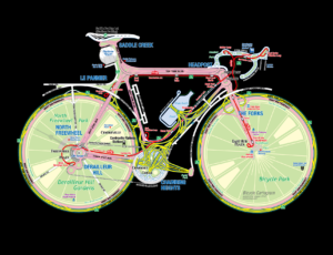 Bicycle Cartogram